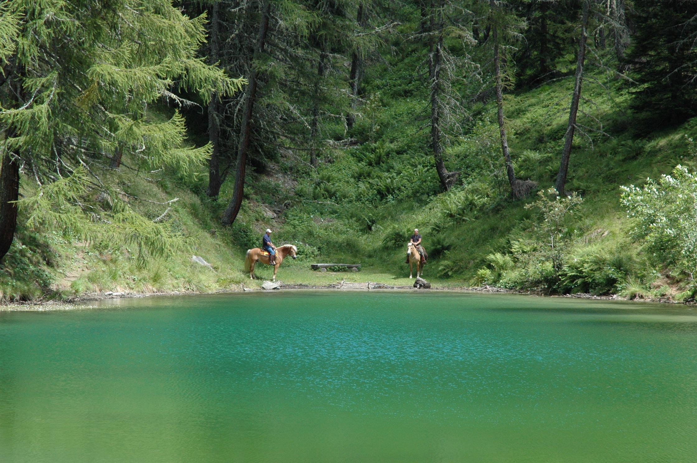 paardrijden valsugana in de mooie natuur