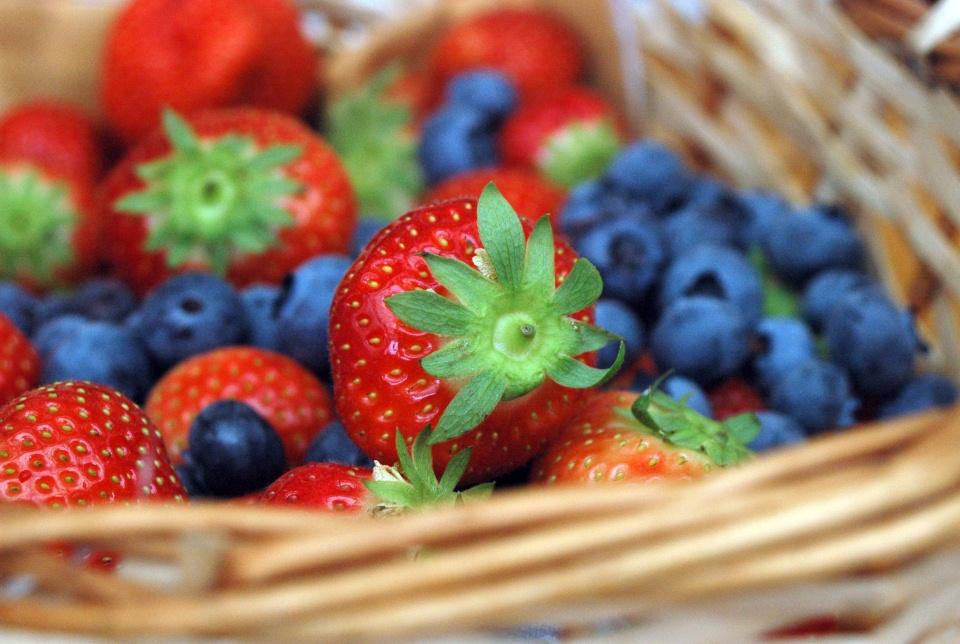klein fruit sant'orsola